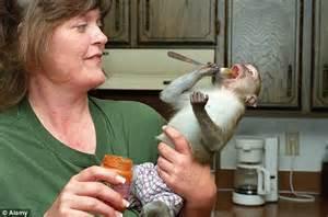 health fears    monkeys    pets