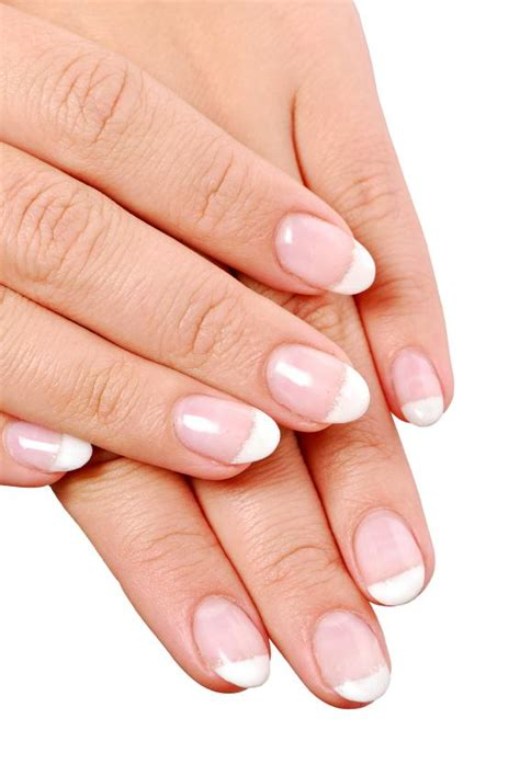 neat concerbative nails french nail pictures slideshow