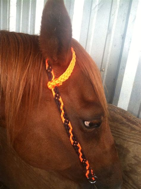 barrel racing horse hair braids 17 best images about paracord horse tack on pinterest