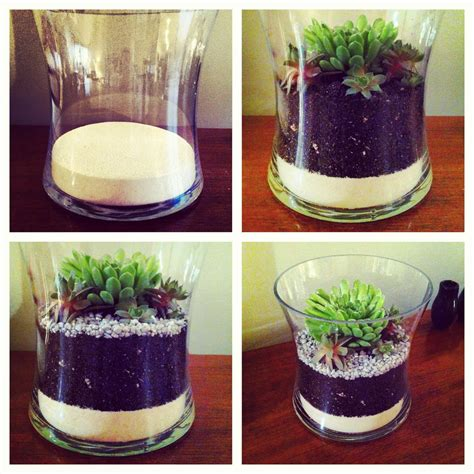 diy succulents simple succulents oh
