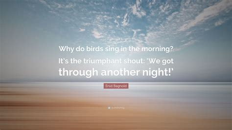enid bagnold quote why do birds sing in the morning it