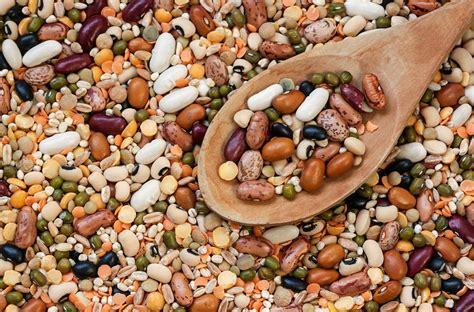 alimentazione proteine proteine vegetali dieta alimentazione