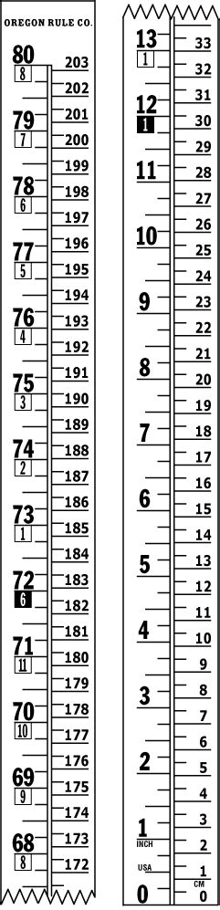 height chart inches to feet www pixshark com images