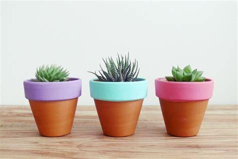 argilla per vasi vasi di terracotta vasi scegliere vasi di terracotta