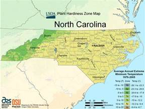 map of major cities in carolina carolina major cities map pictures to pin on