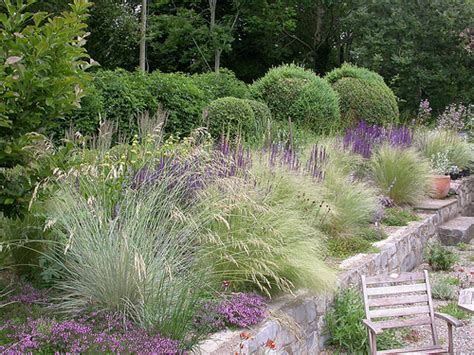 Mixed Perennial Planting Various Grasses Stipa Grass Garden Design 2