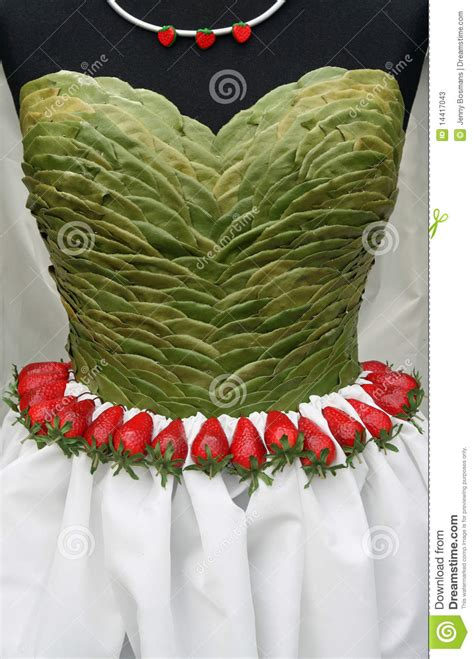 Dress Anak Layer Motif Leaves dress top made from leaves stock photos image 14417043