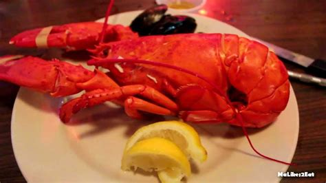 hd boston lobster feast all you can eat lobster