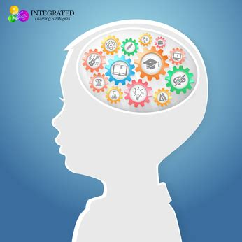 Brain Child the age when your child s brain stops learning