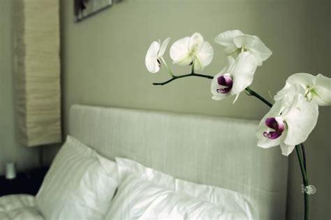 white linen headboard white linen headboard transitional bedroom simplee bliss
