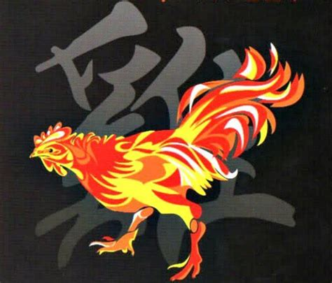 1000 images about chinese rooster on pinterest