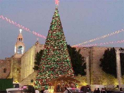 file pikiwiki israel 29582 christmas tree bethlehem jpg