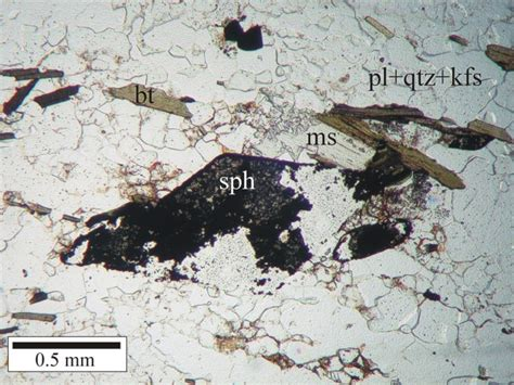 biotite thin section usgs ofr03 221 thin section photomicrograph of sle