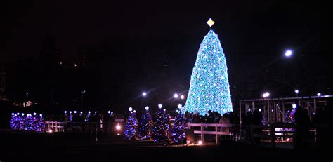 file us national christmas tree 2010 jpg wikimedia commons