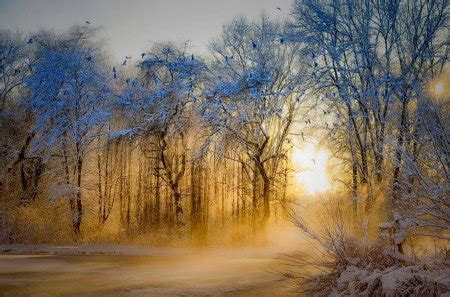 winter photography abstract background wallpapers