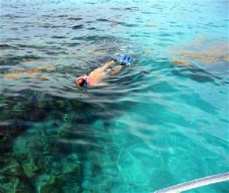 catamaran coral reef snorkel bermuda snorkeling and scuba diving packages in bermuda