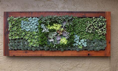 succulent living wall treatment jpg backyard paradise 2