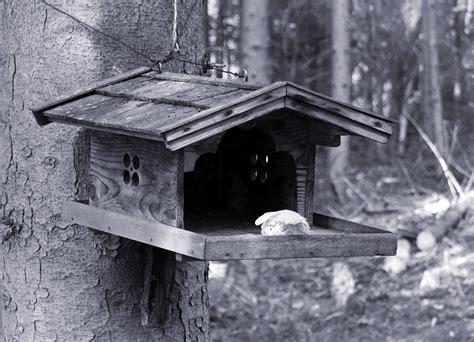 Harga Tempat Pakan Burung Otomatis tempat pakan hewan model kayu daftar harga terupdate