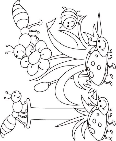 coloring pages of birds and insects thematic coloring pages for each letter preschool
