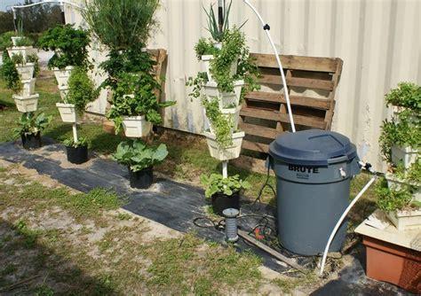backyard growing system 43 best images about backyard urban vegetable garden ideas