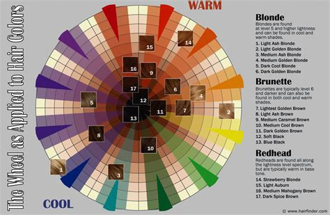 color wheel fashion how to use the hair color wheel hair fashion