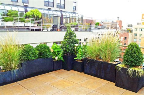 NYC Roof Garden: Paver Deck, Terrace, Container Plants