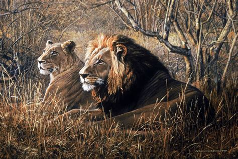 animal painting free johan hoekstra wildlife collection