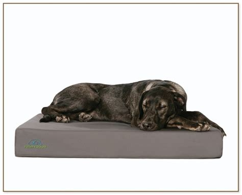 amazon large dog bed extra large dog beds on amazon dog beds and costumes