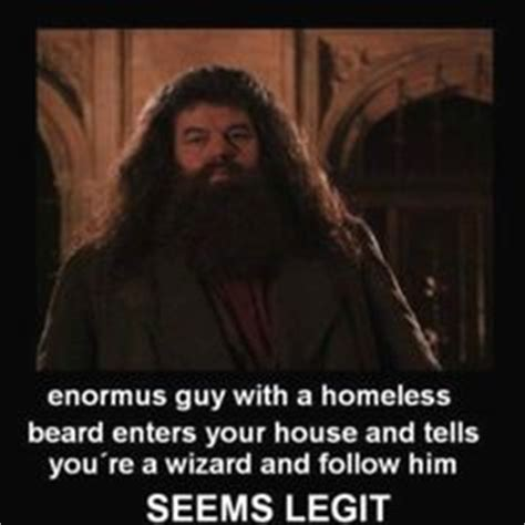 You Re A Wizard Harry Meme - harry potter on pinterest movie mistakes harry potter