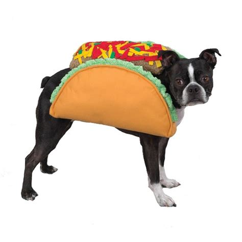 taco puppy taco costume taco costume for dogs breeds picture