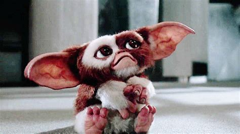 the world s best photos of gremlins and gremlins gifs find on giphy