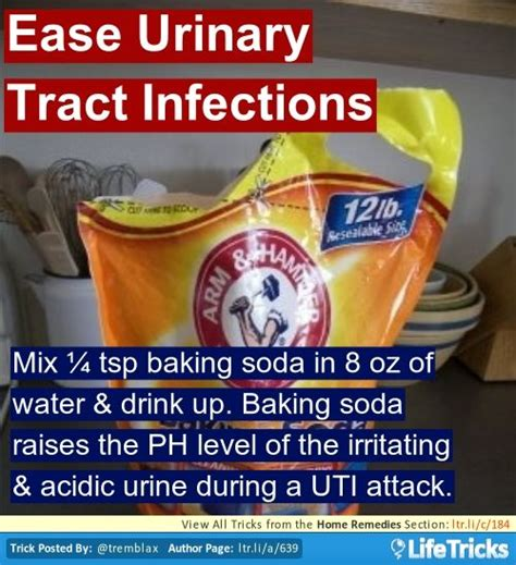25 best ideas about urinary tract infection on