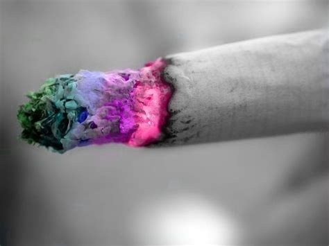 colorful cigarettes smoke cigarette colors image 243350 on favim