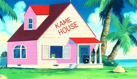 House Planet by Kame House Dragon Ball Wiki