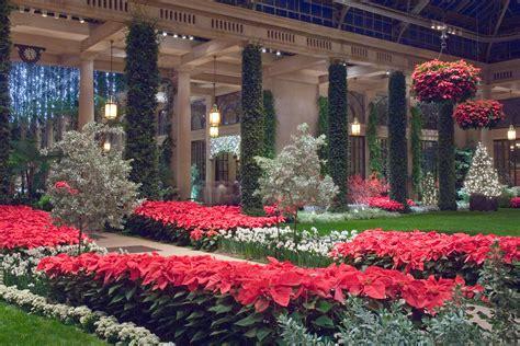 Longeood Gardens by Poinsettia Longwood Gardens The Plants