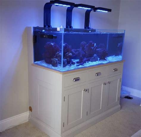 aquarium design group review coral creations aquarium cleaning and maintenance