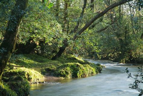 Landscape Photography Rivers Spitchwick Dartmoor Rivers And Trees