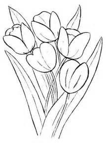 tulip coloring pages for kids barriee