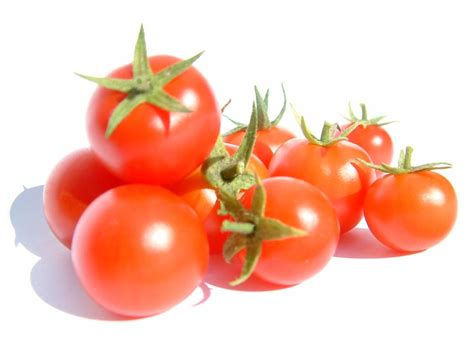 Masker Tomat agriculture properties of tomato fruit khasiat buah tomat