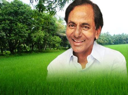 Arnie Says Lets Make Green by Let S Make Hyderabad A Green Carpet Says Kcr