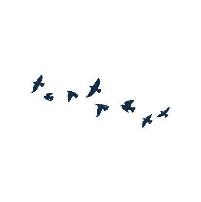 tris bird tattoo 45 best divergent bird designs images on
