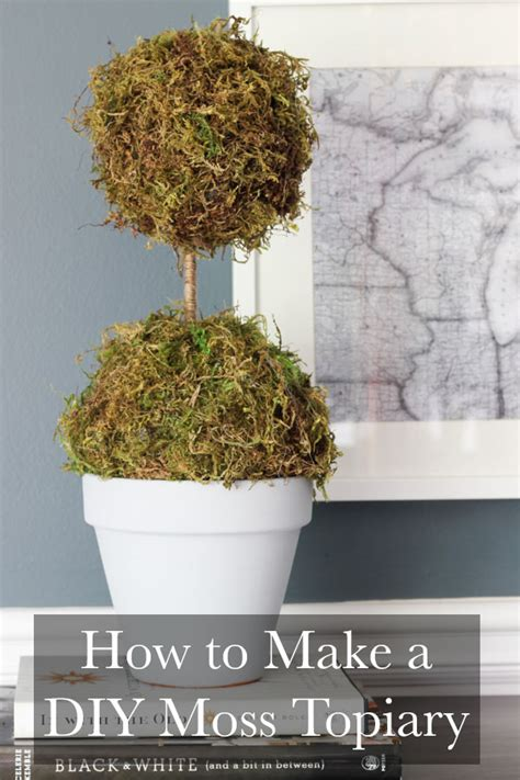 how to create a topiary how to make a diy moss topiary erin spain
