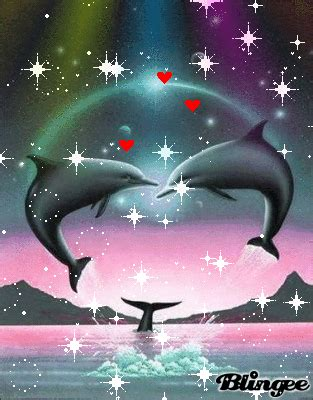 imagenes de amor animadas de delfines delfines enamorados picture 129369820 blingee com