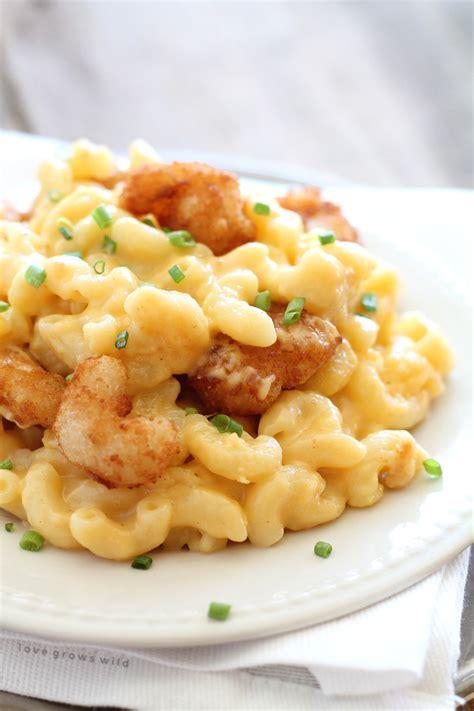 creamy cheesy shrimp and pasta recipes three cheese shrimp macaroni and cheese love grows wild