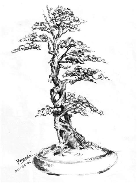bonsai tree tattoo designs best 25 bonsai ideas on