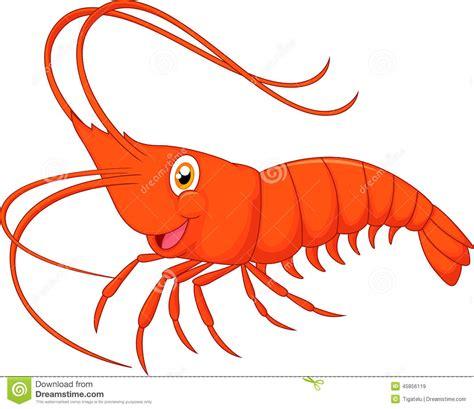 shrimp clip free shrimp clipart clipground