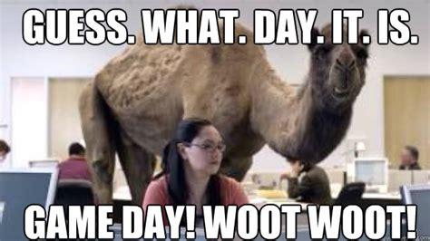 Game Day Meme - camel memes quickmeme
