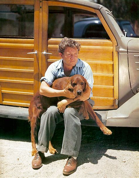 irish setter dog movie picture of spencer tracy