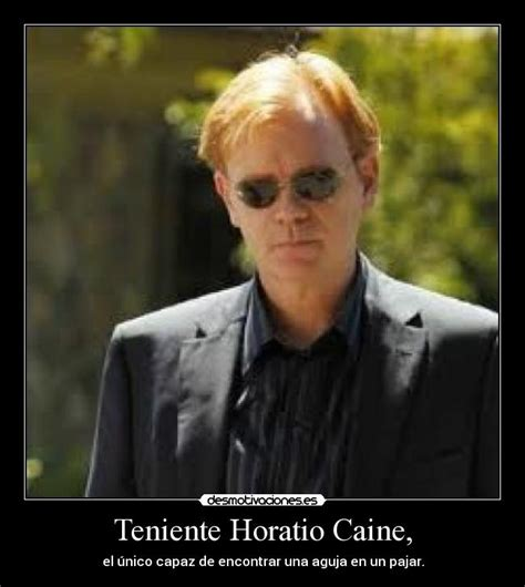 Horatio Caine Meme - dos superpolicias en miami blu ray movies internetmedia