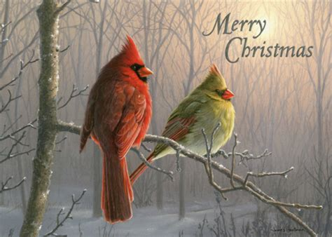 cardinals  branch box   christmas cards  lpg